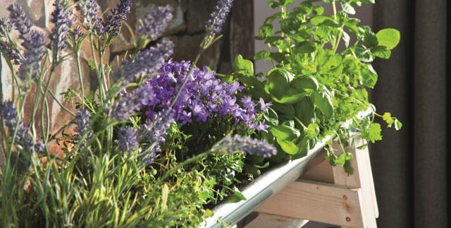4113ac3b2 Vytvorte si záhradu na balkóne či terase